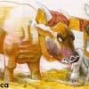 Boul vaca şi măgarul