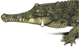 lacrimi de crocodil