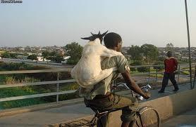 capra vecinului