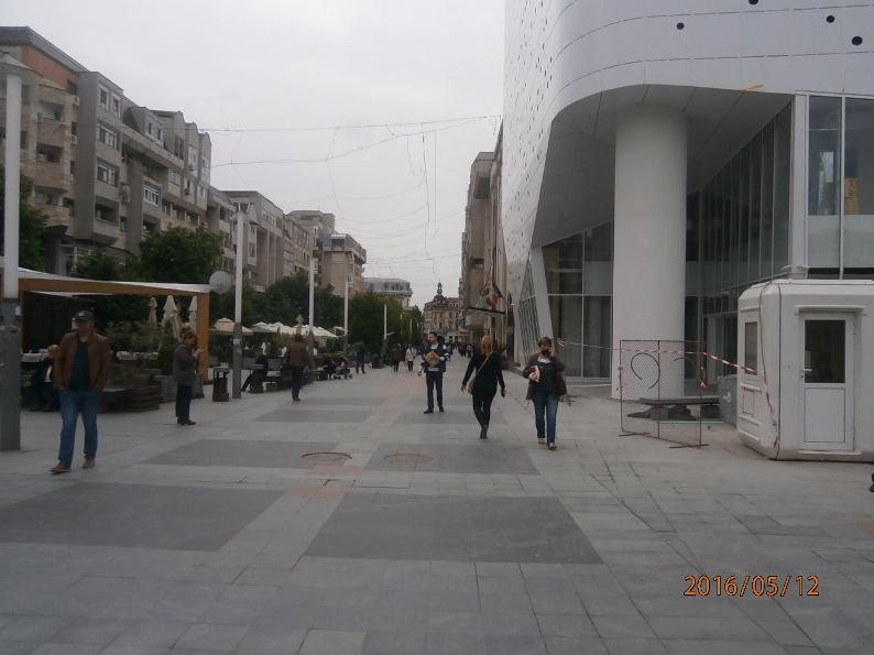 CETATETNI P5123871